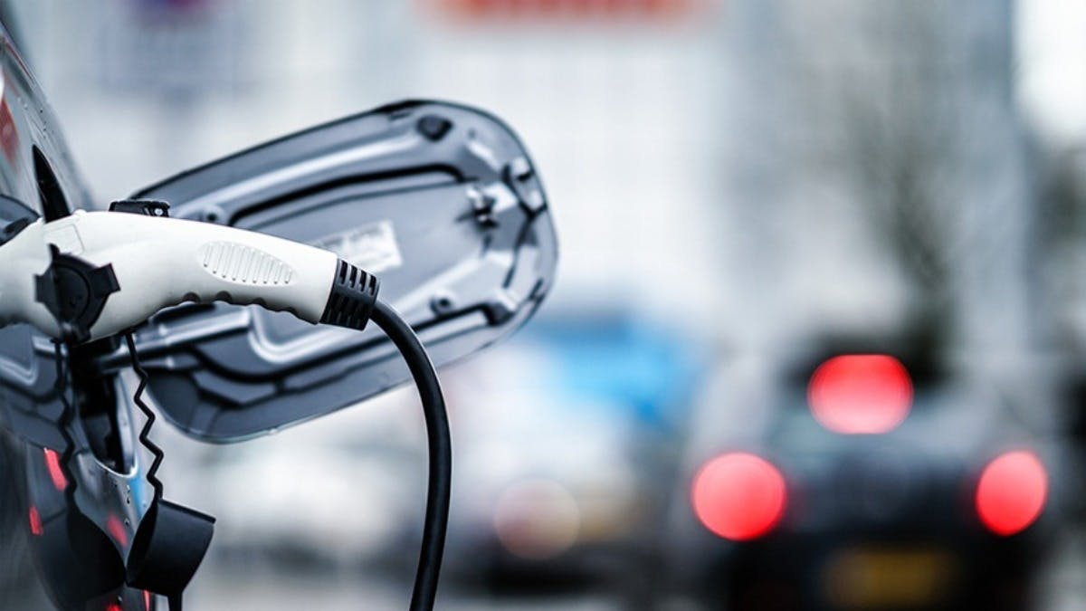 Which University has the most electric cars in their fleet?