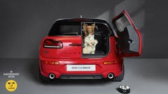 MINI Partners with Dogs Trust