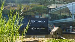 Toyota (GB) PLC Staff Enhance Wildlife Gardens at Epsom HQ and Unveil New eco-HQ Signage